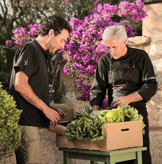 Das Bio-Gemüse der Yoga Finca Son Mola Vell kommt aus der Region