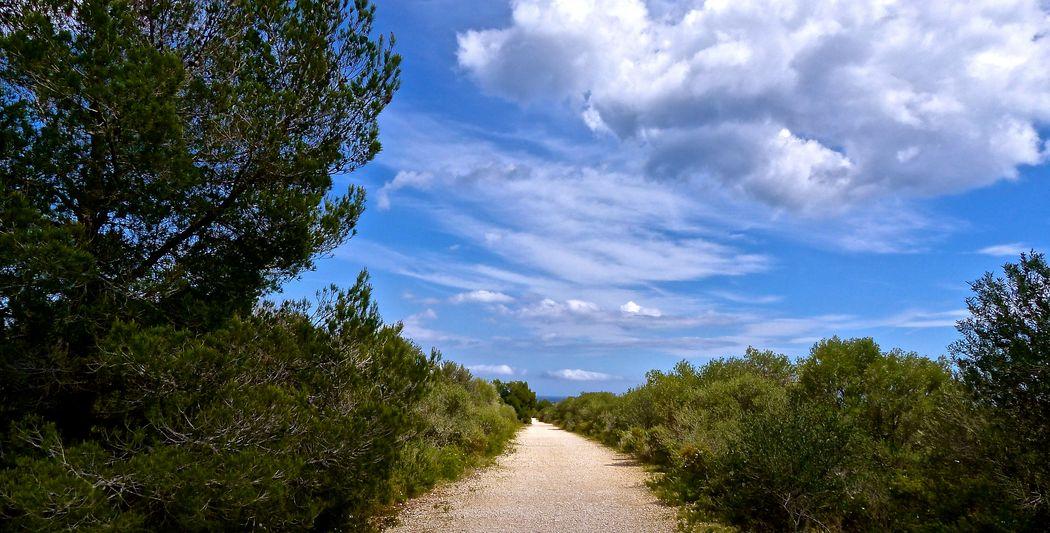 Begleitpersonen können Ihren Urlaub auf der Finca Son Mola Vell mit atemberaubenden Wanderungen verbringen